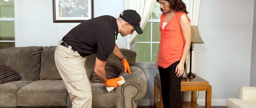 Eldorado Hills, CA carpet upholstery cleaning